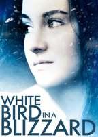 White bird in a blizzard e7dbe5c0 boxcover